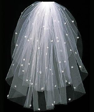 Bridal Veil with Embroidered Scattered Daisies