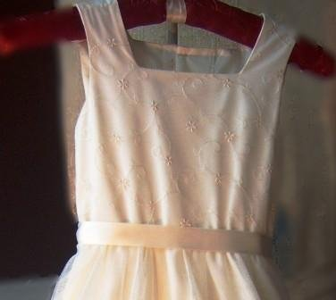Luli & Me Ivory Embroidered English Net Special Occassion Dress