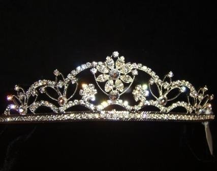 Gemma Crystal and Rhinestone Tiara in Silver