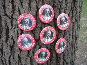 7-PACK OF HISTORIC BUTTONS HONORING PRESIDENT THEODORE ROOSEVELT BUTTONS PINS PINBACKS