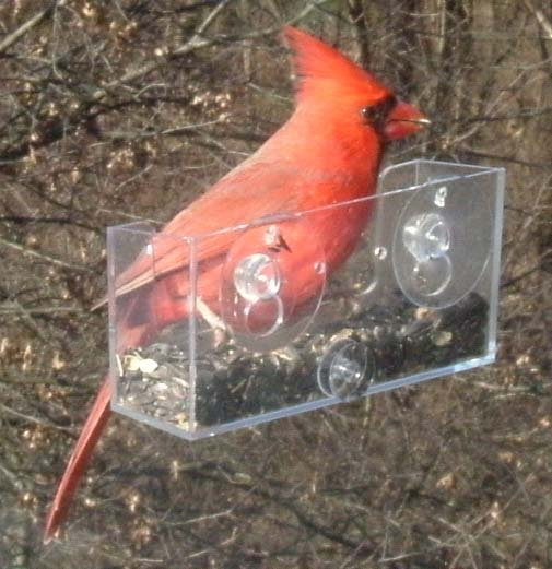 4-PACK OF BAKER WINDOW BIRD FEEDERS THESE BIRD FEEDERS CREATE A LOT OF JOY & HAPPINESS!