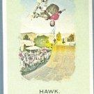 2010 Topps Allen & Ginter Baseball Tony Hawk (Skateboarder) #54
