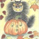 Cat O Lantern Black Cat with Jack O Lantern JOL ACEO Print