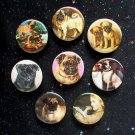 "Pugs 1.25"" Magnets Set of 8"
