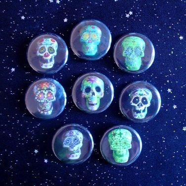 "Sugar Skulls - Day of the Dead 1.25"" Magnets Set of 8"
