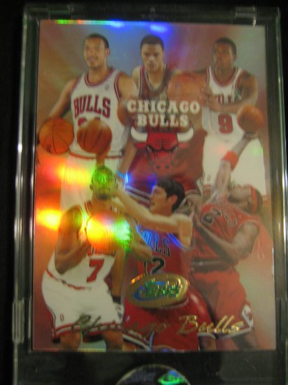 2004 eTOPPS Chicago Bulls team card  Ben Gordon Luol Deng rookie cards
