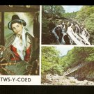 BETWS-Y-COED~Swallow Falls~Miner's Bridge~Nat'l Costume