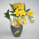 Dendrobium Orchid Home Decor Handmade Flower - Luna Clay