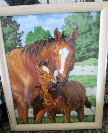 FRAMED Paint By Number Painting Horses Mare and Foal