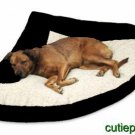 "Pet Dog Cat X-Large 42""X65""X42"" Black Corner Bed"