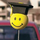 Graduation Antenna Topper