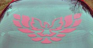 Trans Am Firebird hood rear window decal decals