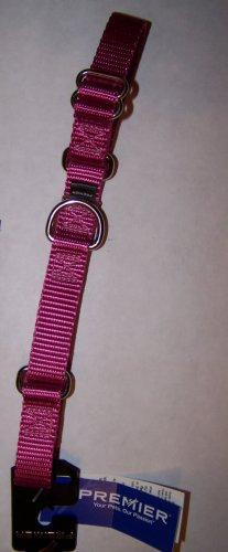 "Premier Martingale Dog Collar Medium 3/4"" W x 10-16"" L"