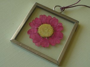 Pressed Red-Pink Daisy Picture Frame Pendant