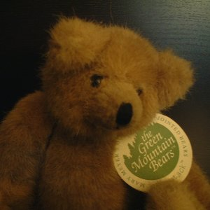 Fully jointed Teddy Bear - Haystack