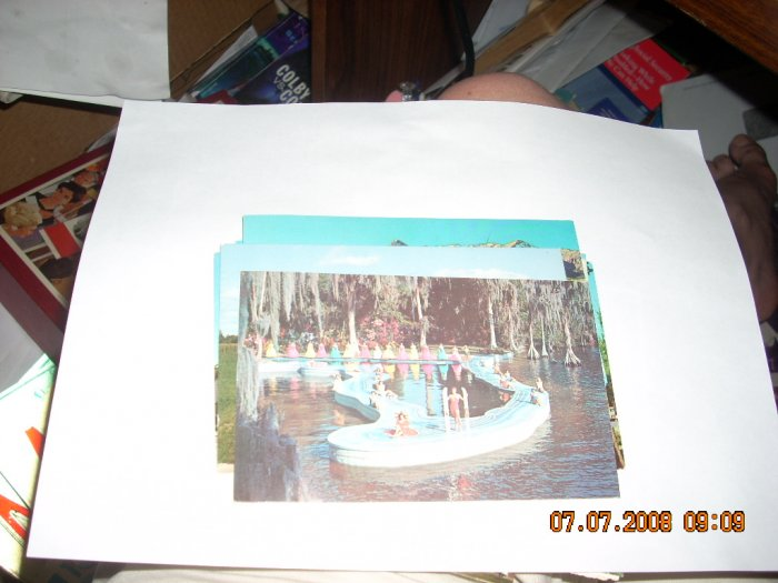 cypress gardens esther wiliams swimming pool florida