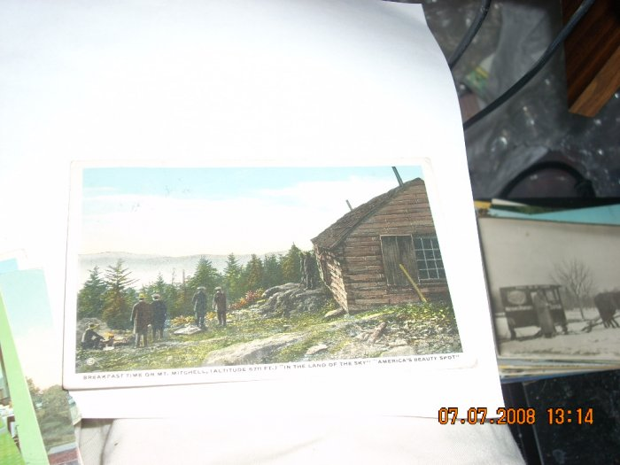 vintage postcard  mt mitchell north carolina