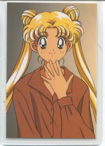 Sailor Moon R ~ Usagi in Brown Idol