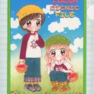 "Random Walk ""Fresh Picnic File"" (clear file)"