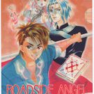 Roadside Angel clear file