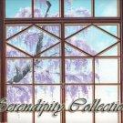 Pretty window view of wisteria tree production backgronud