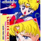 Sailor Moon PP4, 205