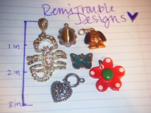 assorted charms