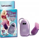 Gina Lynn's All Time Pleaser Vibrator