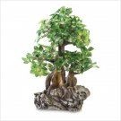 EVERLASTING BONSAI TREE