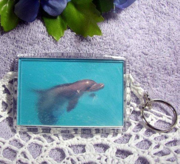 Photo Key Chain, Bag Tag, Key Fob, Dolphin in Mist, Large 2x3 Keychain, ID Tag