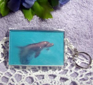 Photo Key Chain, Bag Tag, Key Fob, Dolphin in Mist, Large 2x3 Keychain, ID Tag