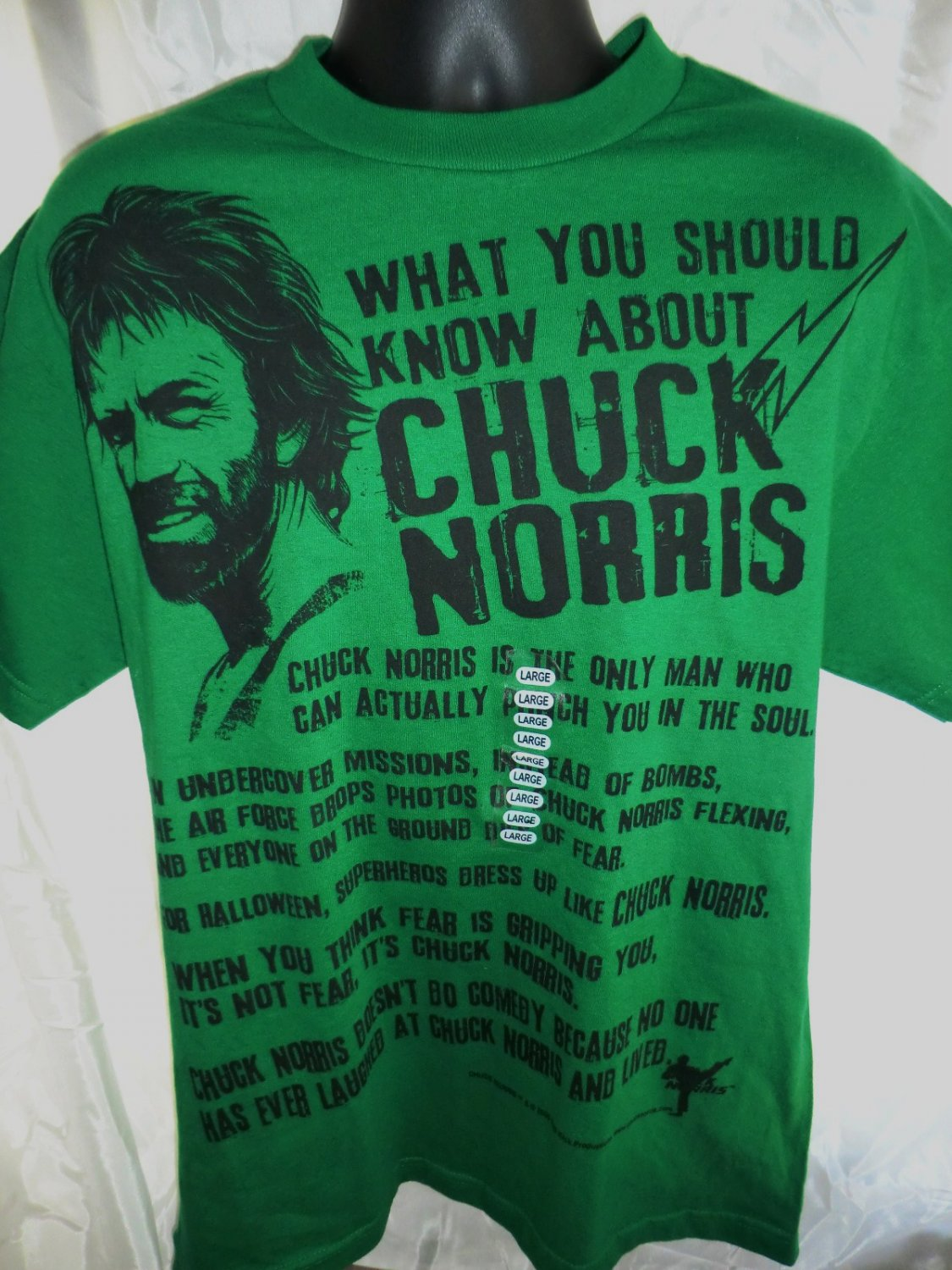 SOLD! NEW What You Should Know About Chuck Norris T-Shirt Size Large