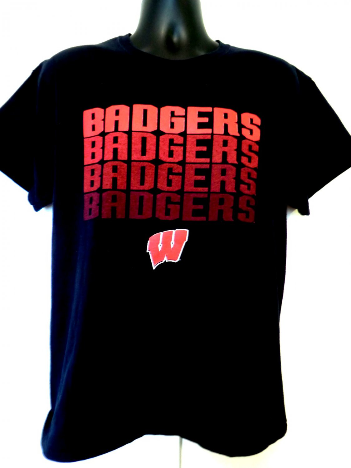BADGERS T-Shirt Size Large University of Wisconsin