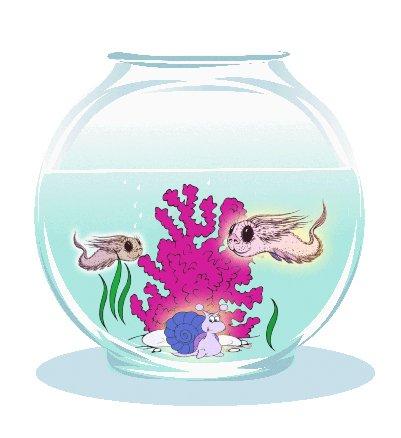 Littlest Pet! SEA DRAGONS & Teeny Weeny WINKLES COMBO!!