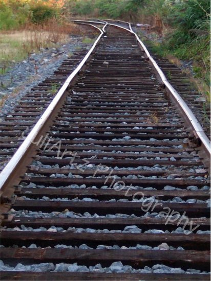 TRACKS TO NOWHERE-Photographic Art-Rail Road-Scenic-Decor-Wall Hanging-Train