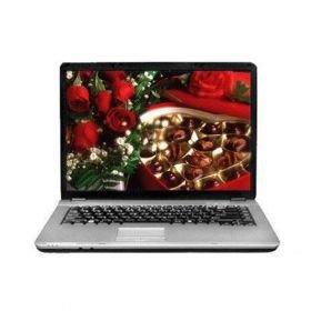 "HASEE HP510 15.4"" Laptop (Pentium Dual Core T2130 ,2048 MB RAM ,120 GB Hard Drive ,Windows XP)"