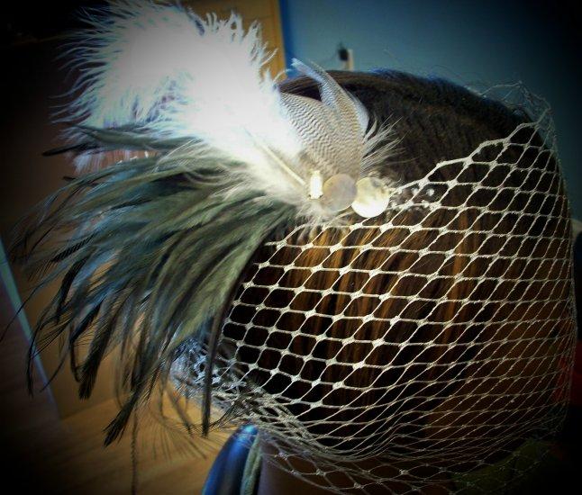 Platnium Princess Birdcage Veils