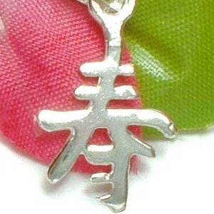 925 STERLING SILVER CHINESE SYMBOL CHARM / PENDANT - LONGEVITY