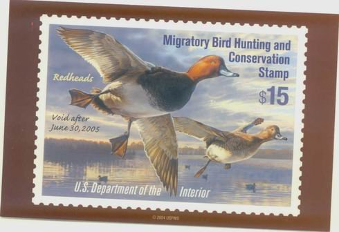 2003 MIGRATORY BIRD HUNTING DUCK STAMP postcard REDHEAD DUCK