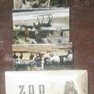 Germany Frankfurt am Main Lake Zoo PHOTO PAMPHLET1950'S