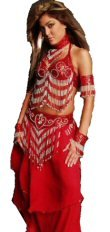 5 Piece Belly Dancer Costume with Two Tone Beaded Fringe