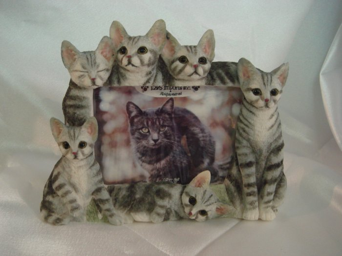 Tabbies,Silver Pictutre Frame #35297-7B $24.99