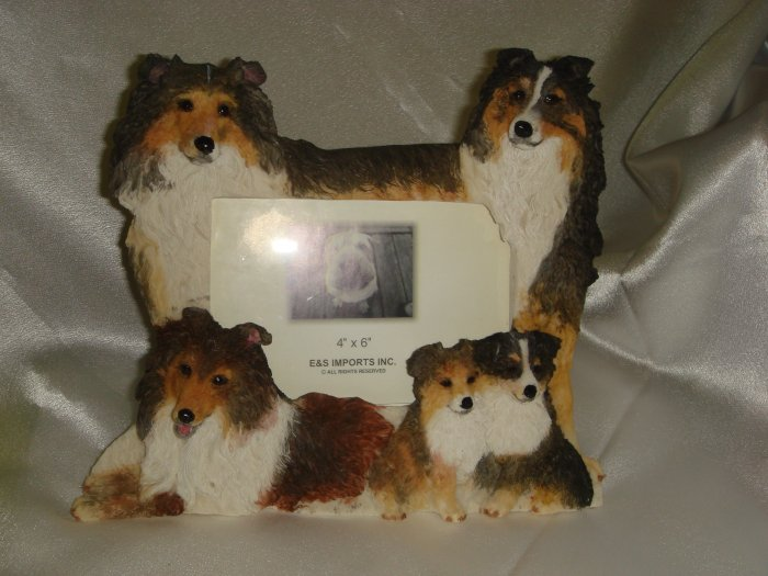 Sheltie Picture Frame