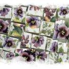 Purple ~VIOLET CHINTZ~50+ Mosaic Tiles **FREE SHIP