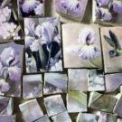 ~IRIS & HUMMINGBIRD CHINTZ~ 50+ Mosaic Tiles