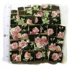 *Elegant **ROSES ON BLACK* * 50+  Mosaic Tiles