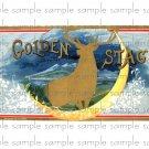 Golden Stag Vintage Digital Cigar Box Art Ephemera Scrapbooking Altered Art