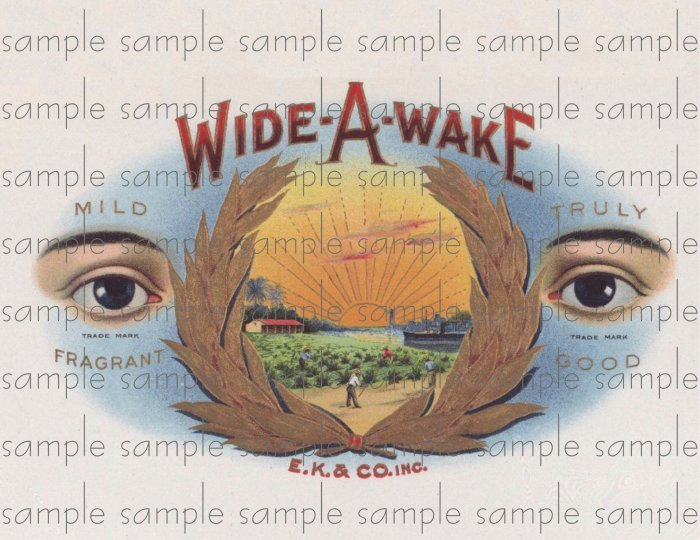 Wide A Wake Cigar Box Art Ephemera Scrapbooking Altered Art Decoupage
