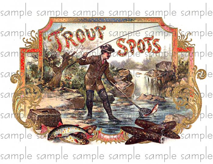 Trout Spots Cigar Box Art Ephemera Scrapbooking Altered Art Decoupage