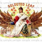Selected Leaf Cigar Box Art Ephemera Scrapbooking Altered Art Decoupage